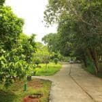 Weg zum Zen-Garten